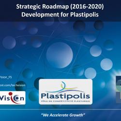 Strategic Roadmap...